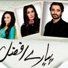 Pyare Afzal Drama Title Song By Waqar Ali