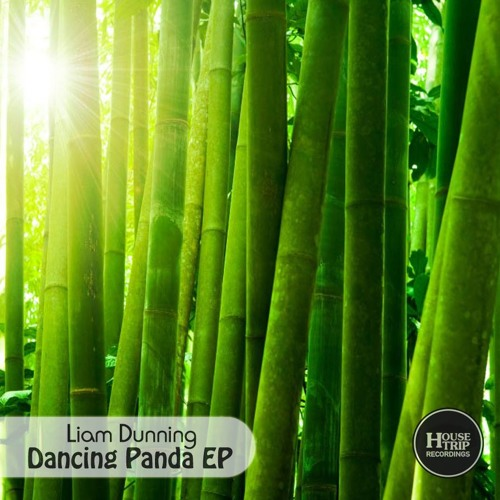 Liam Dunning - Tribute (Original) preview - Dancing Panda Ep - ***OUT NOW***