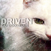 Driven Live at Cafe Gold 31.01.2014