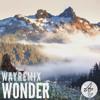 Adventure Club - Wonder (WAY Remix)