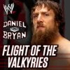 WWE Daniel bryan  Flight Of The Valkyries