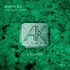 AKLoo2 - Steve Ko - Absynth - Snippet