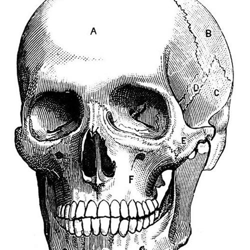 Eiton - Necro (f1) [UNSIGNED]