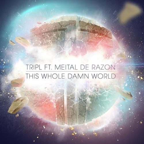 This Whole Damn World - TripL ft. Meital De Razon (Radio mix)