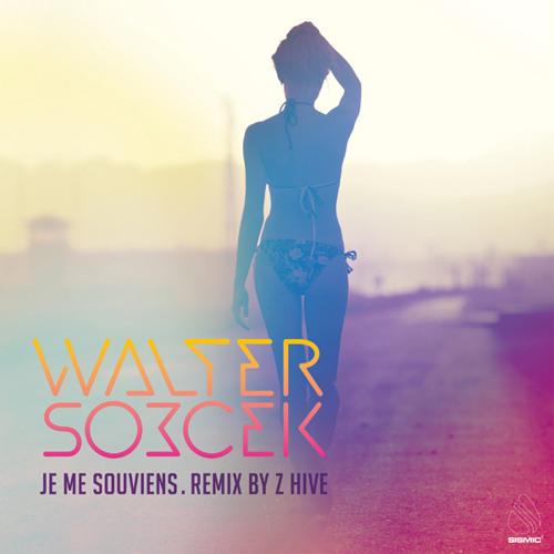"Walter Sobcek ""Je Me Souviens"" (Paul remix)"