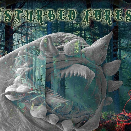 Murukhan - The Machine   (DISTURBED FOREST - Va)