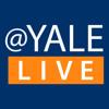 Yale University Art Gallery  Behind the Scenes with Jock Reynolds, director