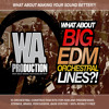 W. A. Production - What About: Big EDM Orchestral Lines Preview