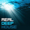 Deep House - New mash-up of February (Look Right Through & Ready for your love)