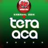 BC TeraAca