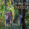 A Day in Bardia - Bardia National Park, Nepal: Album Sample