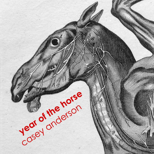 Casey Anderson - Year of the Horse (House/Techno Mix)