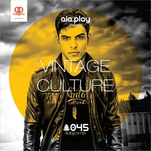 #045 @ Vintage Culture (BRA)