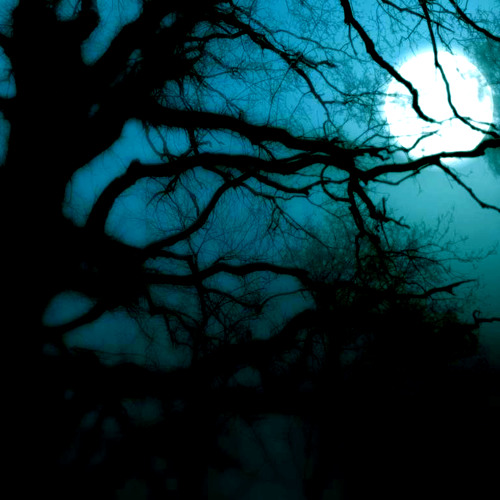 MY MOON by Daniel Argila ft Lady Emz
