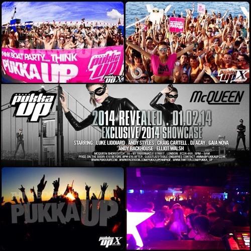 Pukka Up Ibiza 2014 Season Launch Party (Andy Styles)