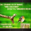"Big Tymers vs DJ Snake ""Bird Machine"" (Stay Fly BRANDO! Remix) Transition 89-100BPM"