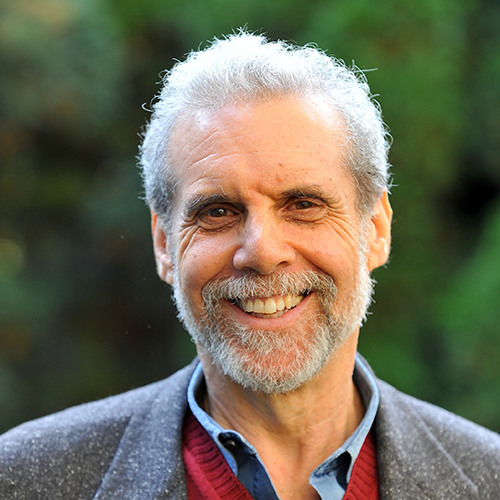 Download Daniel Goleman On Focus: The Secret to High Performance and Fulfilment
