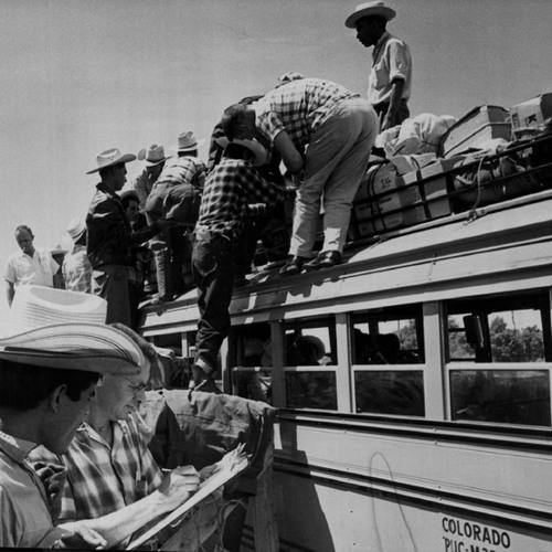 "WW4-29-13The California Bracero Program And Obama/AFL-CIO ""Comprehensive Immigration Reform"""