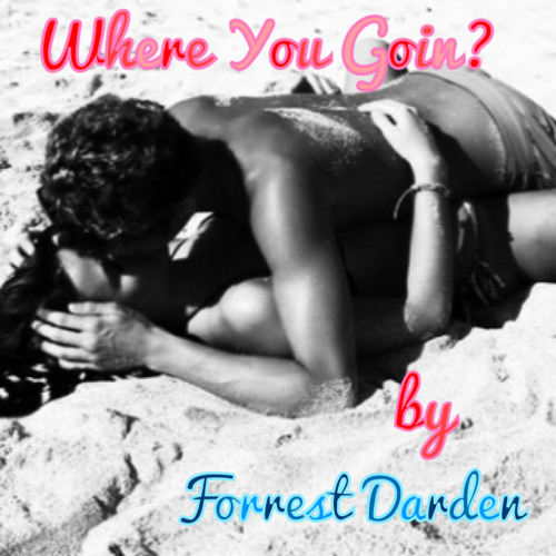 Where You Goin? by Forrest Darden