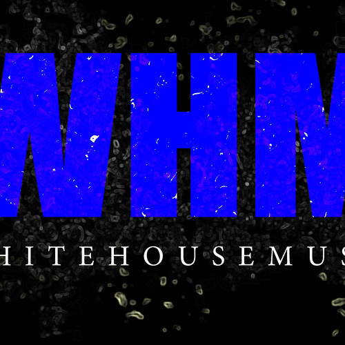 Holy Shit by White House Music