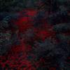 ALEX COBB 'Rain At The Fete (excerpt)' (SP040)