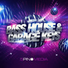 Bass House & Garage Keys - 5Pin Media
