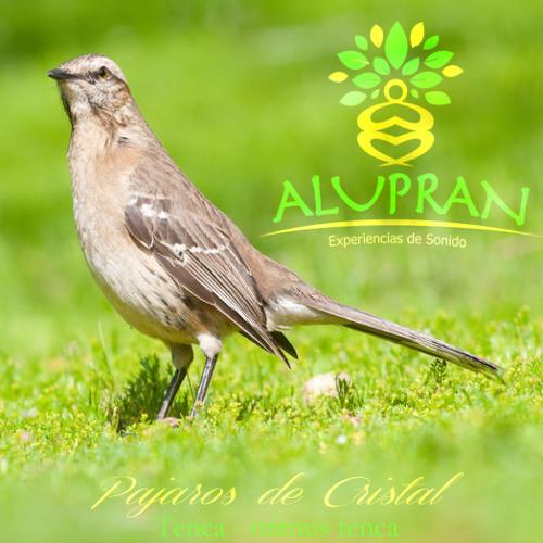 Pajaros De Cristal - Meditación Alupran ( Crystal, Tibetans Bowls & Singing Birds)