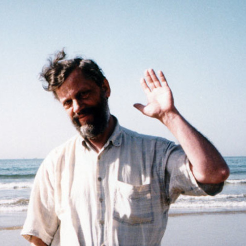 Raimo Kangro - Display IV: Tundmatu muusiku portree (1992)