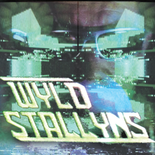wyld stallyns - rules (shop excerpts)