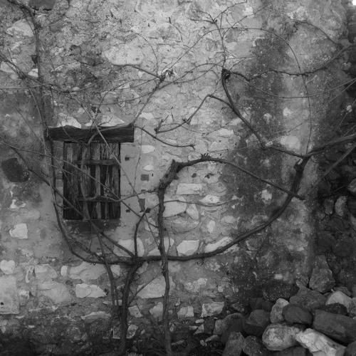 Racines, Une Histoire, Nocturne 7 Feb ( http://open.spotify.com/artist/25SRM5wLczZ3uTLcVXRoe7 )