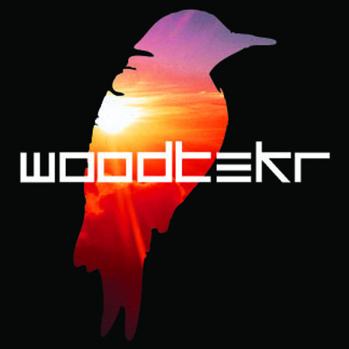 Woodtekr - Emotion (clip) (Forthcoming Odyssey Recordings)