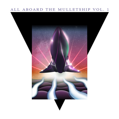Various Artists - All Aboard The Mulletship Vol. 1 • (Album Preview)