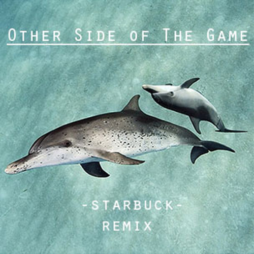 Other Side of The Game (-starbuck- Remix)