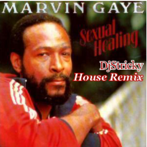Sexual Healing-Marvin Gaye (christopher Roy house remix)