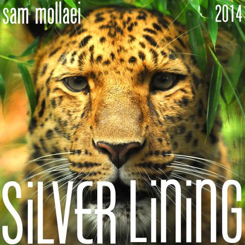 Sam Mollaei's Silver Lining Soundtrack 2014