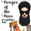 Panjabi MC - Beware of the Boys (DJ Lautstark Edit)