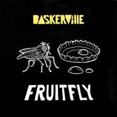 Page 1   Baskerville - Fruit Fly (Raving George Remix). Topic published by DjMaverix in Releases (Music Floor).