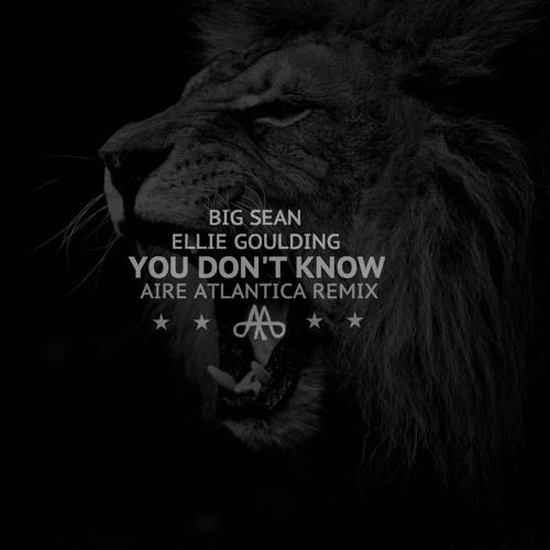 PREMIERE: Big Sean - You Don't Know Ft. Ellie Goulding (Aire Atlantica Remix)