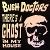 Bush Doctors - There's a Ghost in my House (BD's Bump in the Night Mix)