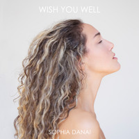 Wish You Well (Owsey Extended Remix)