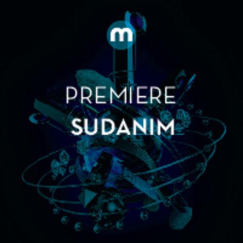 Premiere: Sudanim 'The Link'