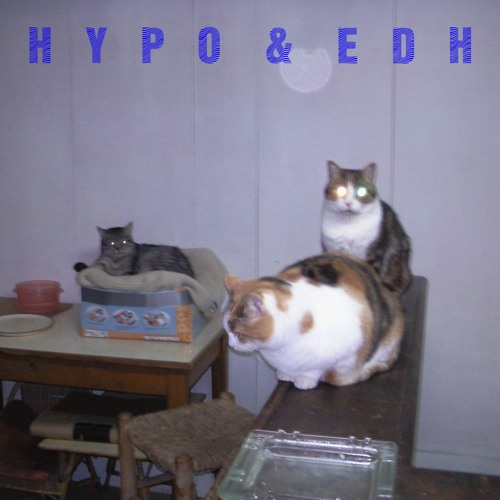 Hypo & EDH - Hauntology - Rarities And Remixes 2006-2013