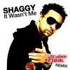 Download Shaggy - It Wasn't Me (Father Funk Remix) [FREE DOWNLOAD]