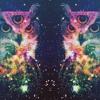 Molecular Delusion Remix Plus Bonus Beats - Purusha