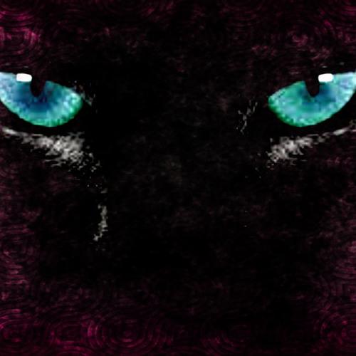 BLAK CAT-DJ Richard Hernandez ( ORIGINAL MIX)(DEMO)