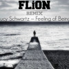 Lucy Schwartz – Feeling of Being(FLiON Remix)