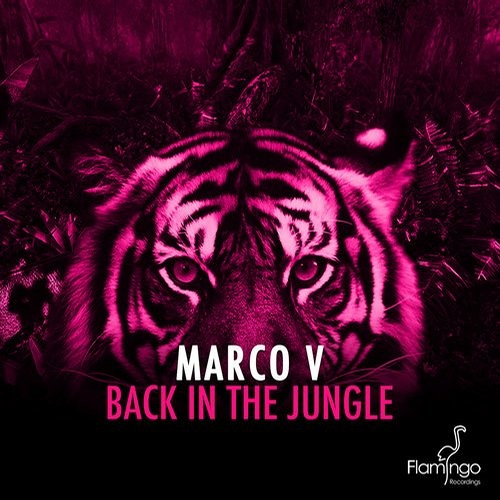 Marco V - Back In The Jungle (Original Mix)