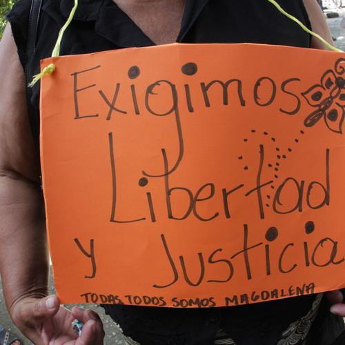 Proceso contra Magdalena Morales,11/02/2014  El Progreso, Honduras,explicacion Abg.Victor Fernandez