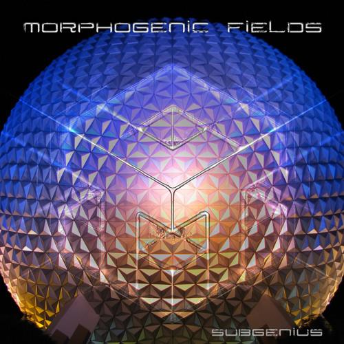 MorphogenicFields
