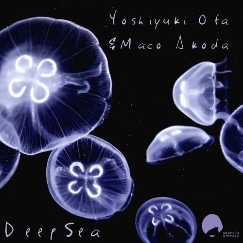 Yoshiyuki Ota & Maco Akoda - Fate (Original Mix) {Cut Preview} [Emerald & Doreen Rec.]  OUT 28th FEB